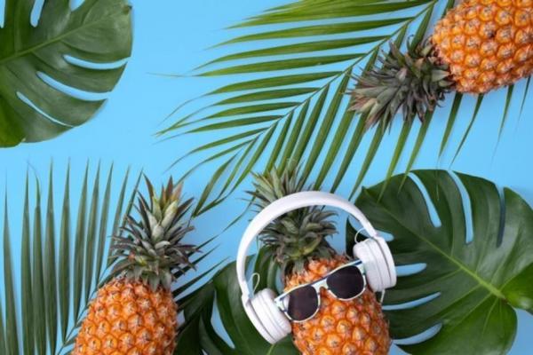 Musiques pour Film Promotionnel Tourisme